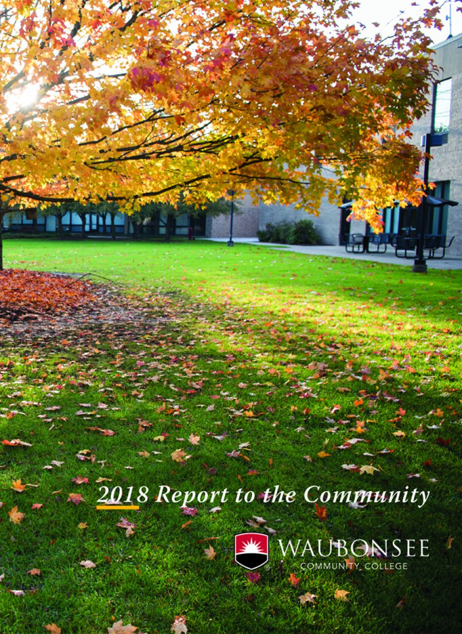 Cover of Annual Report to the Community
